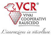 VCR_Logo